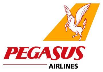 05_Pegasus_01