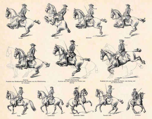 1897 Cavalry - Antique Engraving