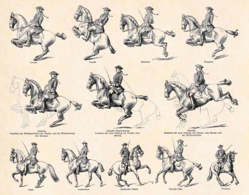 1897 Cavalry - Antique Engraving