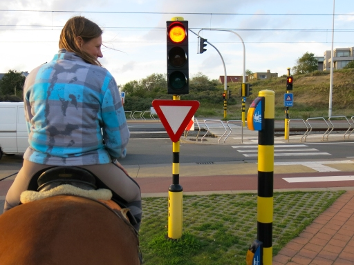 Here they have special traffic signal buttons for horse riders - how great is that!