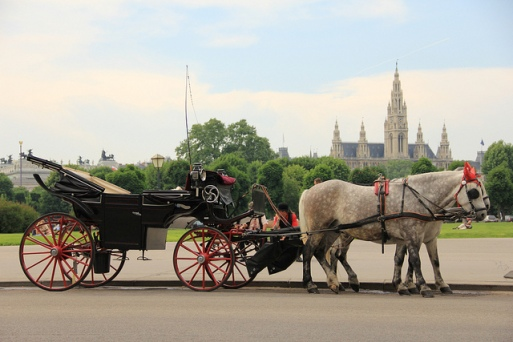 http://www.austriawanderer.com/visit-vienna-by-horse-carriage/